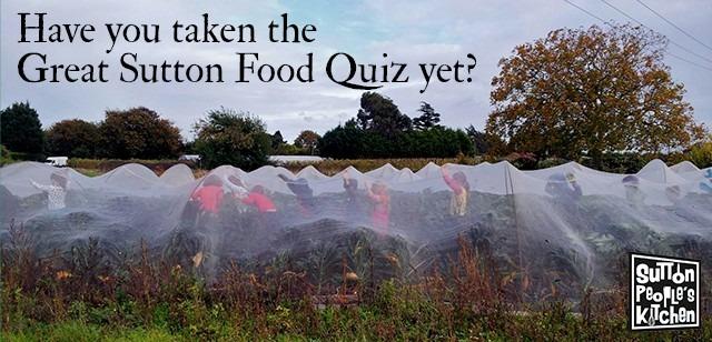 food-quiz-banner