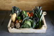 What's in our Vegboxes: 19th & 20th of February 2015
