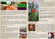 Newsletter-JAN-2014-inside-web