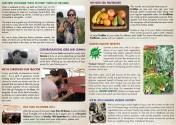 Newsletter JUL 2014
