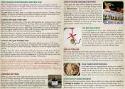 Newsletter-NOV-2013-inside-web