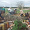 An Intro to Permaculture at Sutton Community Farm